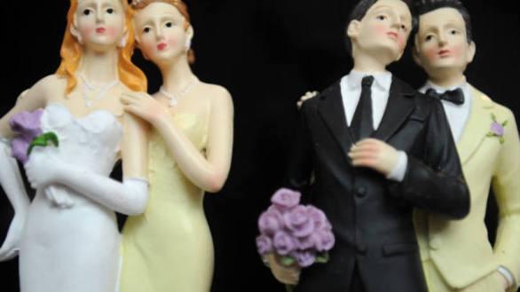 casamento mp